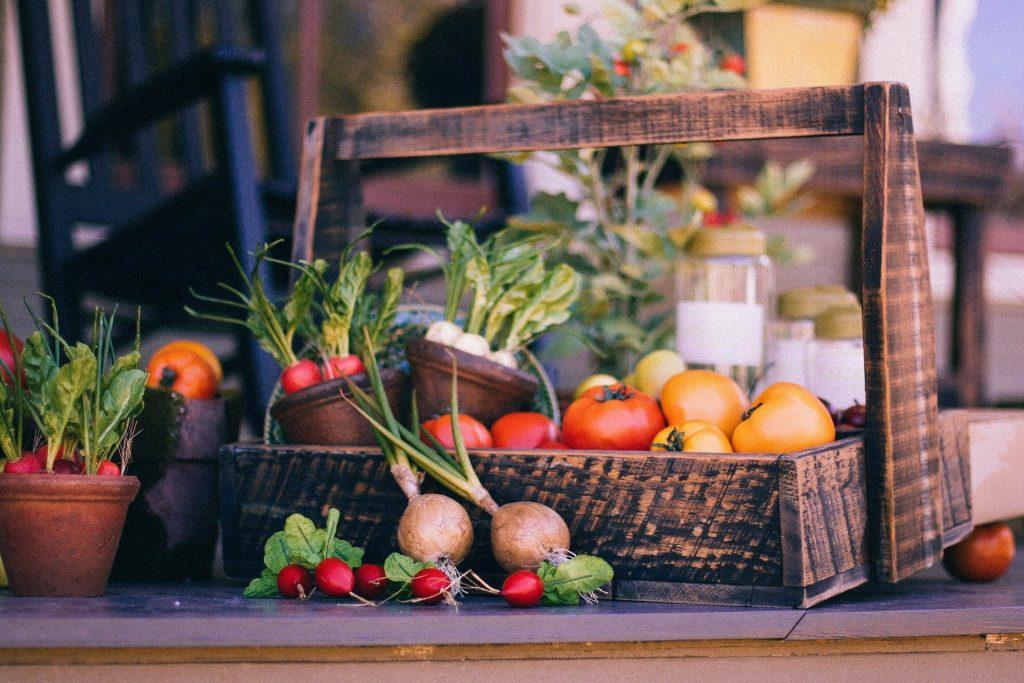 vegetable garden services
