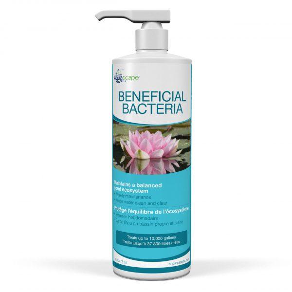 Beneficial Bacteria - 473ml / 16oz