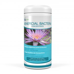 beneficial bacteria for ponds