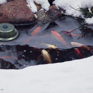 300-Watt Pond De-Icer