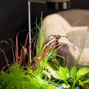 AquaGarden Plant Light