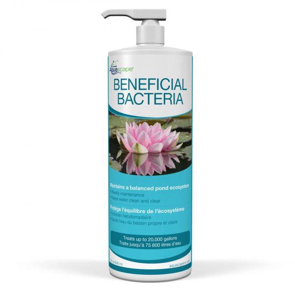 Beneficial Bacteria - 946ml / 32oz