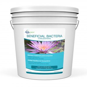 Beneficial Bacteria Concentrate - 3.2kg / 7lb