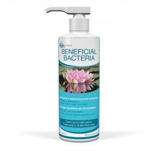 Beneficial Bacteria - 236ml / 8oz